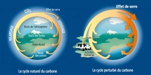 Climat - CO2 et effet de serre [vect]